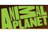 Reproducir videos de Animal Planet